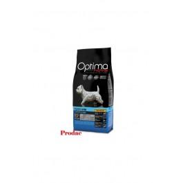 Fluval Chi II Nano Acuario, 19L