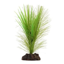 Fluval Plant Valisneria 12,5cm