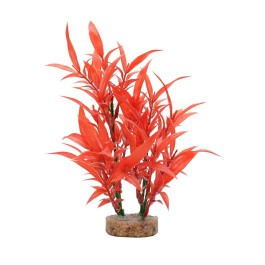 Fluval Plant Hygrophila Roja 20cm