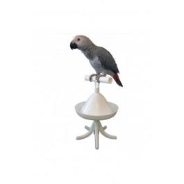 Exo terra Turtle Clear Kit de Limpieza